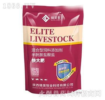 快大肥-显著提高瘦肉率,促进机体营养物质吸收,改善饲料转化率
