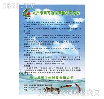 水产系列产品