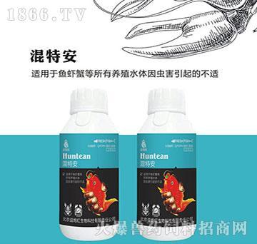 混特安-增加水体中溶氧