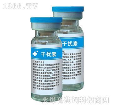 干扰素-广谱抗病毒,抗肿瘤以及免疫调节功能
