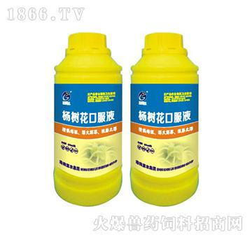 杨树花口服液-清热燥湿、泻火解毒、涩肠止泻