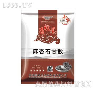 麻杏石甘散-清热解毒、