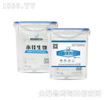乳酸环丙沙星-主治大肠