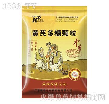 黄芪多糖颗粒-治疗禽新