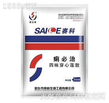 痢必治-清热解毒、凉血消肿、抗菌消炎、除湿化滞
