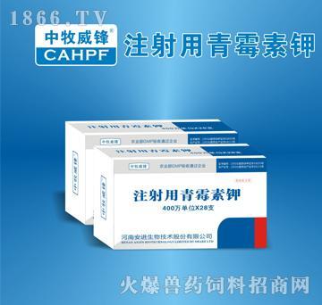 注射用青霉素钾-用于革兰氏阳性菌感染,亦用于放线菌及钩端螺旋体等的感染