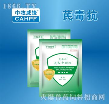 芪毒抗-用于鸡传染性法氏囊病的辅助治疗
