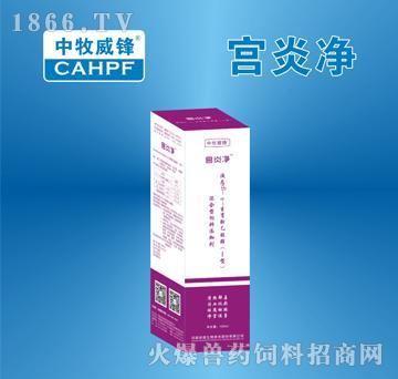 宫炎净-清热解毒、活血化瘀、祛腐排脓、净宫促孕