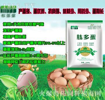 肽多蛋-产蛋多、蛋质优、抗病强、耗料少、用药少、蛋期长