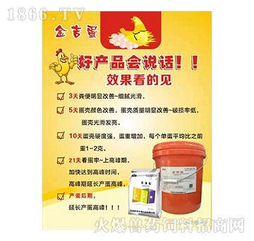 金吉蛋-调节肠道菌群,降低肠炎发生,提高饲料转化率