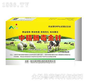 中精肠毒金针-主要用于猪的病毒性胃肠炎及各种顽固性细菌性腹泻