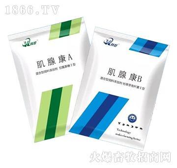 肌腺康A+B-双管齐下,根治肌胃炎、腺胃炎!
