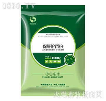 保肝护肾粉