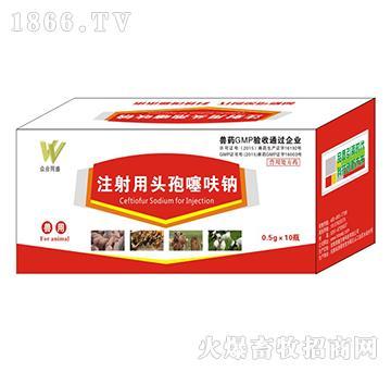注射用头孢噻呋钠-精准