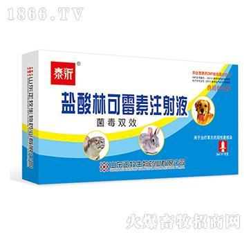 盐酸林可霉素注射液(菌毒双效)