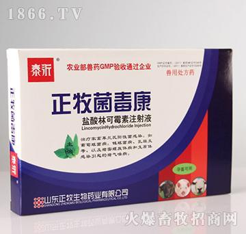 正牧菌毒康(盐酸林可霉素注射液)