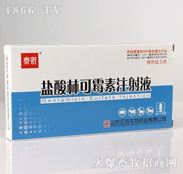 盐酸林可霉素注射液-用于革兰氏阳性菌感染,亦可用于猪密螺旋体病和支原体等感染