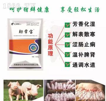 助常宝-防治病毒性腹泻