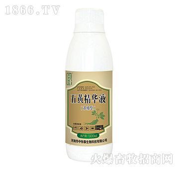 五黄精华液(浓缩型)-抗菌消炎、增免抗病、清热解毒