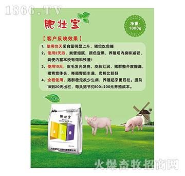 肥壮宝-保育猪、育肥猪使用