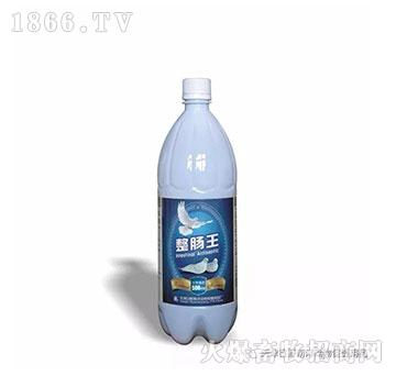 整肠王(500ml)