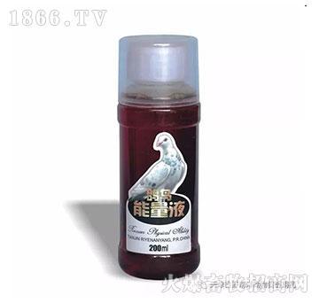 鸽鸟能量液