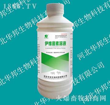 伊维菌素溶液