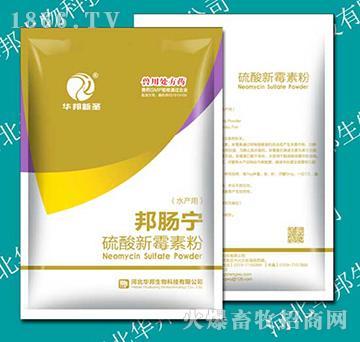 硫酸新霉素粉(水产用)100g