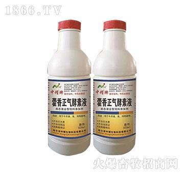 藿香正气酵素液