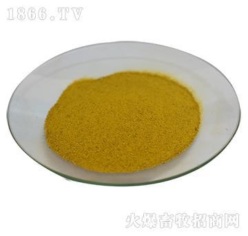 姜 黄 粉