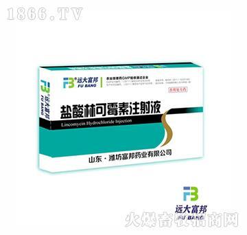 10%盐酸林可霉素注射液
