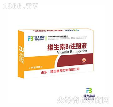 复合维生素B注射液(畜用)