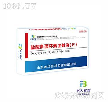 盐酸多西环素注射液Ⅳ