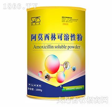 阿莫西林可溶性粉(国标化药系列)