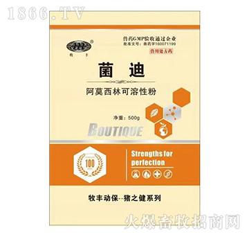 菌迪-治疗对阿莫西林敏感的革兰氏阳性菌和革兰氏阴性菌感染