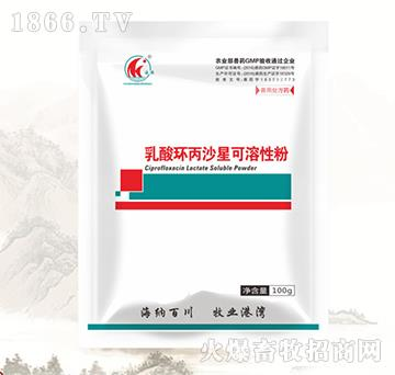 肠安-10%乳酸环丙沙