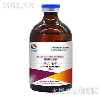 肝肾通口服液