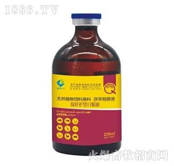 保肝护肾口服液-清热利湿、退黄、利胆保肝