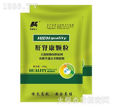 肝肾康颗粒-泻肝胆实火、疏肝护肾、保肝利胆、清三焦湿热、利水通淋、健脾和胃