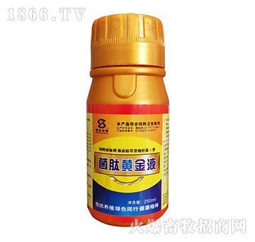 菌肽黄金液-畜禽机体维生素,微量元素,氨基酸和能量的补充