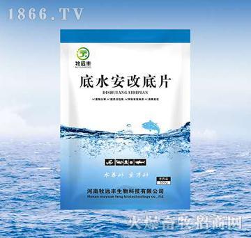 底水安改底片-废物分解、提供活性氧、抑制有害病原