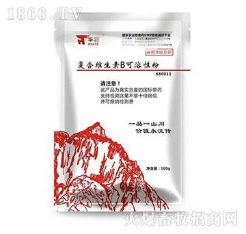 复合维生素B可溶性粉