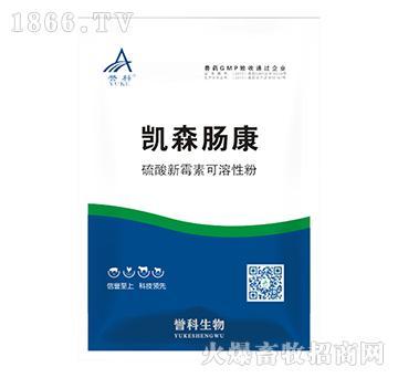 凯森肠康-硫酸新霉素可溶性粉