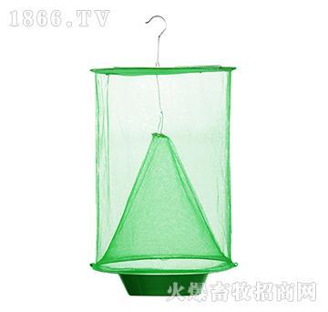 狂丰绿色悬挂捕蝇笼