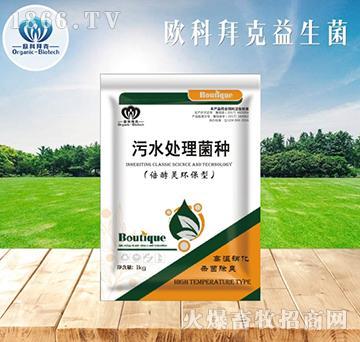 养殖场污水生物处理剂
