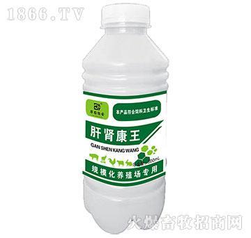 肝肾康王-保肝护肾、解毒排毒
