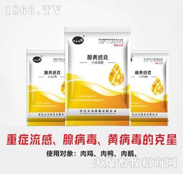 腺黄感克-治疗反胃呕吐