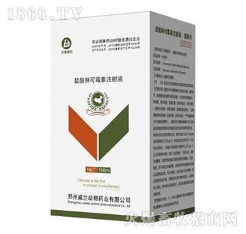 (中牧惠华)盐酸林可霉素注射液-抗菌/混合感染/产后消炎/乳腺炎
