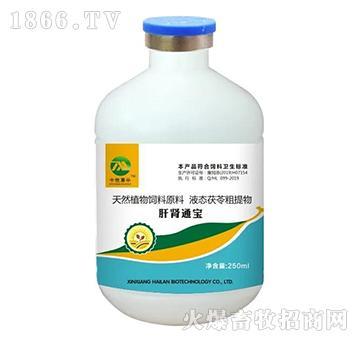 (中牧惠华)肝肾通宝(口服液)-具有强大的保肝护肾,提神增食,提升药物疗效的功能