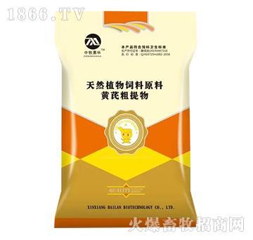 (中牧惠华)黄芪粗提物-对畜禽有免疫增强作用